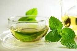 Применение чая мелиссы при заболевании поджелудочной железы